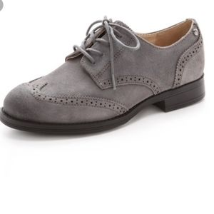 Sam Edelman Irving Grey Oxford Wing Tip Shoes 8